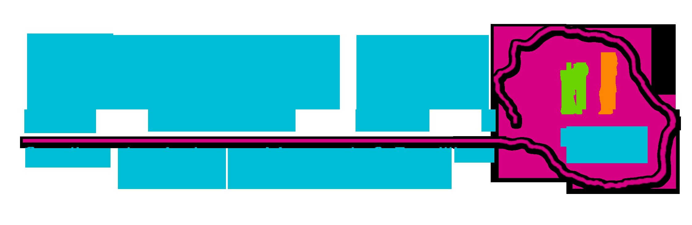 SAMFFA 974 - Syndicat des assistants maternels, assistants familiaux et accueillants familiaux de la Réunion - SAMFFA 974